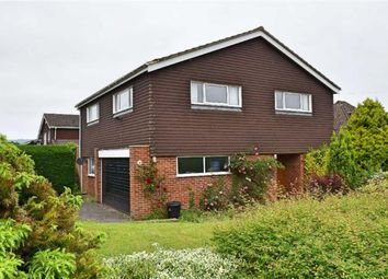 Thumbnail 4 bed detached house for sale in Bullfinch Lane, Riverhead