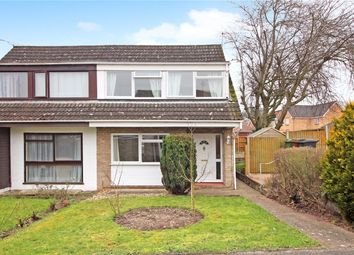 Thumbnail 3 bed semi-detached house for sale in Higher Green Close, Newton Flotman, Norwich, Norfolk