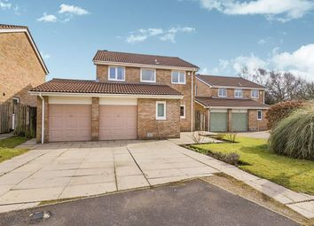 Thumbnail 4 bed detached house for sale in Dukes Meadow, Ingol, Preston