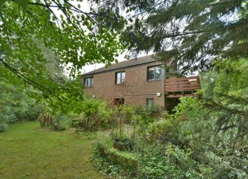 Thumbnail 3 bed detached house for sale in Fairfax House, Crossing Road, Palgrave, Diss, Norfolk
