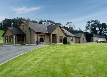 Thumbnail 5 bed detached house for sale in Newcastle Road, Ballynahinch, County Down