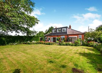 Thumbnail Bungalow for sale in Hull Road, Barmby Moor, York