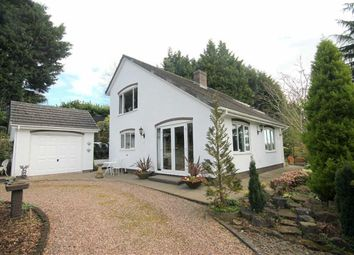Thumbnail 2 bed detached house for sale in Old Monmouth Road, Longhope