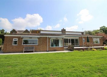 Thumbnail 4 bed detached bungalow for sale in Hob Hill, Hazelwood, Derbys