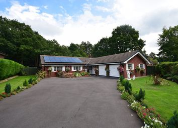 Thumbnail 3 bed detached bungalow for sale in Sylvan Close, Twemlows Avenue, Higher Heath, Whitchurch
