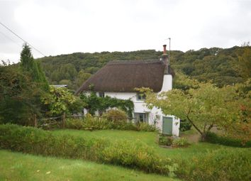 Thumbnail 2 bed detached house to rent in Cottwood, Riddlecombe, Chulmleigh
