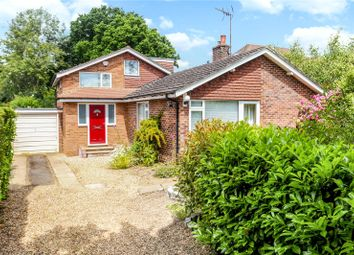 Thumbnail 5 bed detached bungalow for sale in Avenue Road, Cranleigh, Surrey