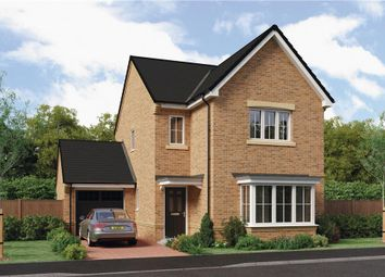 "Thumbnail 4 bedroom detached house for sale in ""The Esk"" at Ladyburn Way, Hadston, Morpeth"