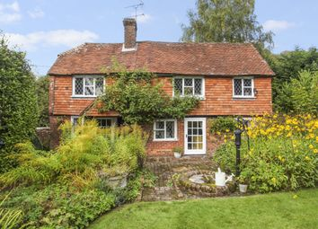 Thumbnail 4 bed detached house to rent in Haslemere Road, Brook, Godalming
