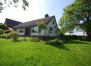 Thumbnail 3 bed detached bungalow for sale in School Lane, Pendock, Gloucestershire