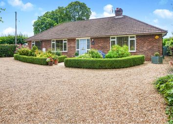 4 bed detached bungalow for sale in Lyeway Lane, Ropley, Alresford SO24