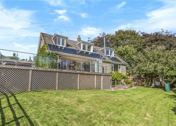 Thumbnail 4 bed detached house for sale in Bozley Hill, Cann, Shaftesbury, Dorset