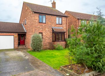 Thumbnail 4 bed detached house to rent in Palmes Close, Naburn, York