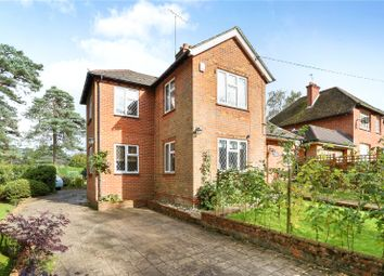Thumbnail 3 bed detached house for sale in Bracken Lane, Blackmoor, Hampshire