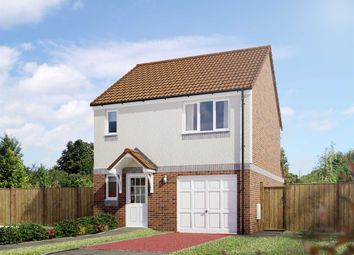 "Thumbnail 3 bedroom detached house for sale in ""The Fortrose"" at Milnathort, Kinross"