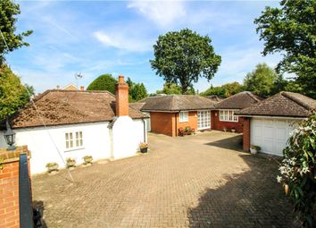 Thumbnail 4 bed detached house for sale in Kennel Ride, Ascot, Berkshire