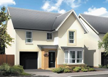 "Thumbnail 4 bedroom detached house for sale in ""Drumoig"" at Liberton Gardens, Liberton, Edinburgh"