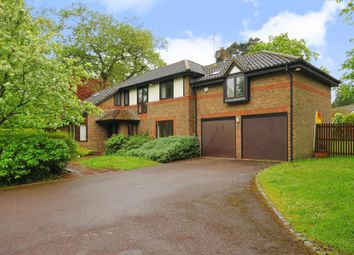 Thumbnail 4 bedroom detached house to rent in The Burlings, Ascot