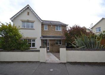 Thumbnail 4 bed detached house to rent in Larks Meadow, Stalbridge, Sturminster Newton