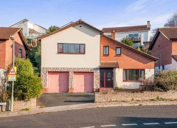 Thumbnail 4 bed detached house for sale in Newton Abbot, Devon