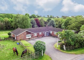 Thumbnail 5 bed detached bungalow for sale in Old House Lane, Romsley, Halesowen