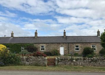 Thumbnail Property to rent in 2 Brandon Cottages, Powburn, Alnwick