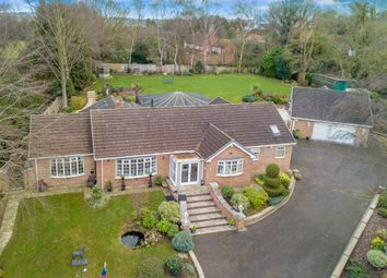 Thumbnail 4 bed detached bungalow for sale in Rectory Lane, Gamston, Retford