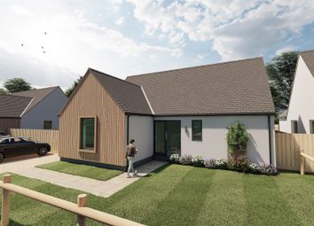 Thumbnail 3 bed detached bungalow for sale in Silfield Road, Wymondham