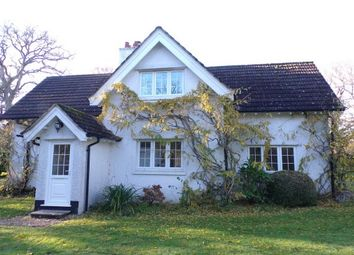 Thumbnail 3 bed property to rent in Cott Lane, Ringwood