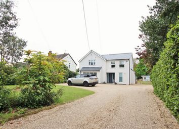 Thumbnail 4 bed detached house for sale in Mersea Road, Blackheath, Colchester, Essex