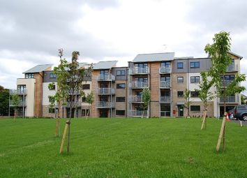 Thumbnail 1 bed flat to rent in Cordiner Place, Aberdeen