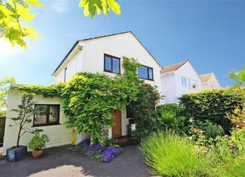Thumbnail 3 bed link-detached house for sale in Dashpers, St Mary's, Brixham