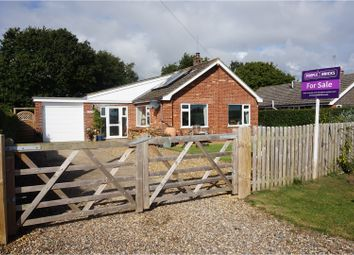 Thumbnail 3 bed detached bungalow for sale in The Common, Norwich