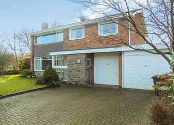 Thumbnail 4 bedroom detached house to rent in The Spinney, Morpeth