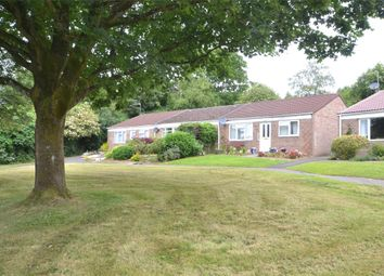 Thumbnail 2 bed terraced bungalow for sale in Manor Close, Wellow, Bath, Somerset