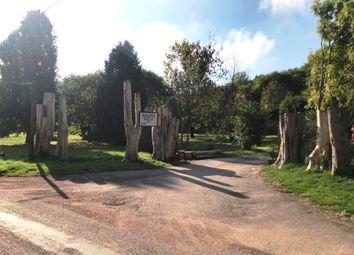 Thumbnail Property to rent in Stokeinteignhead, Newton Abbot