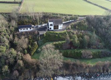 Thumbnail 5 bed detached house for sale in Millbay Road, Islandmagee