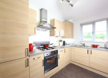 """Thumbnail 2 bedroom terraced house for sale in """"Aberwood"""" at Carron Den Road, Stonehaven"""