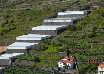 Thumbnail Farm for sale in Greenhouse Ribeira Brava, Ribeira Brava (Parish), Ribeira Brava, Madeira Islands, Portugal