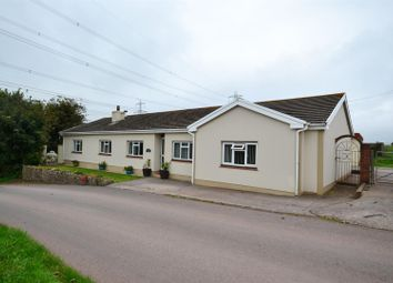 Thumbnail 3 bed detached bungalow for sale in Grove Hill, Pembroke
