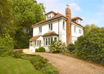 Thumbnail 4 bed detached house for sale in Friday Street, Ockley, Dorking, Surrey