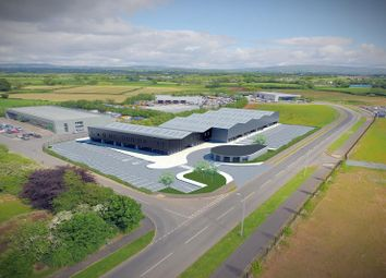 Thumbnail Warehouse to let in Kilcronagh Business Park, Cookstown, County Tyrone