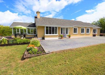 Thumbnail 4 bed detached house for sale in Ard Cavan Lane, Wexford, Leinster, Ireland