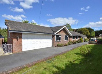Thumbnail 5 bed property for sale in Epping Road, Nazeing, Essex