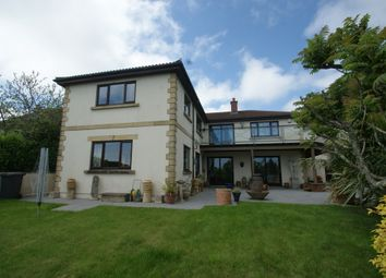 Thumbnail 4 bed detached house for sale in Hillhead, Brixham