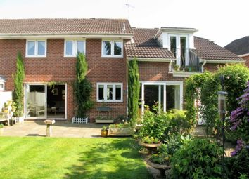 Thumbnail 4 bed semi-detached house to rent in Ash Combe, Chiddingfold, Godalming