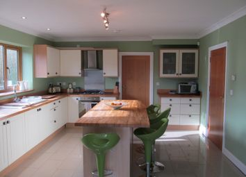 Thumbnail 3 bedroom detached house for sale in Tonypandy CF40, Tonypandy,