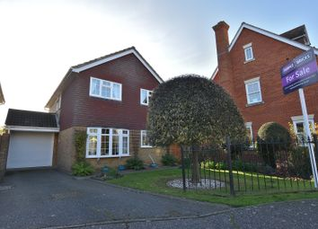 Thumbnail 4 bed detached house for sale in Sackville Close, Chelmsford