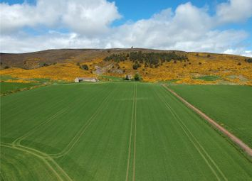 Thumbnail Land for sale in Auchinleith Farm, Rhynie, Huntly, Aberdeenshire