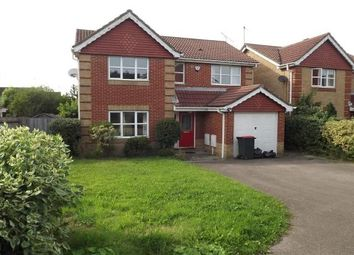 Thumbnail 4 bed detached house to rent in Carter Road, Maidenbower, Crawley